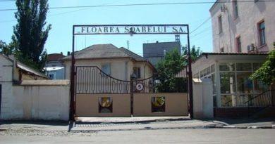 Крупнейший производитель подсолнечного масла в Молдове приостановил  работу на 2 недели