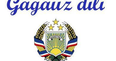 Управление культуры объявило конкурс сценариев на гагаузском языке