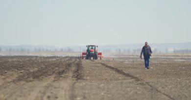 В Молдове введут мораторий на налоговые проверки сельхозпредприятий