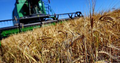 НСГ предложило местным советам освободить агрохозяйства от налога на землю с/х назначения. Что об этом думают мэры?