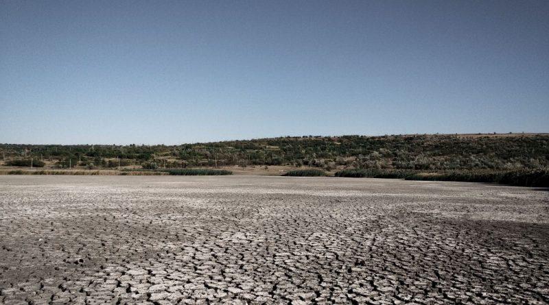 В Чадыр-Лунге власти планируют снизить цену за аренду озер. Так они  хотят улучшить состояние водоемов