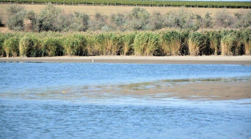 (Видео) В озере села Авдарма уровень воды упал на 1 метр