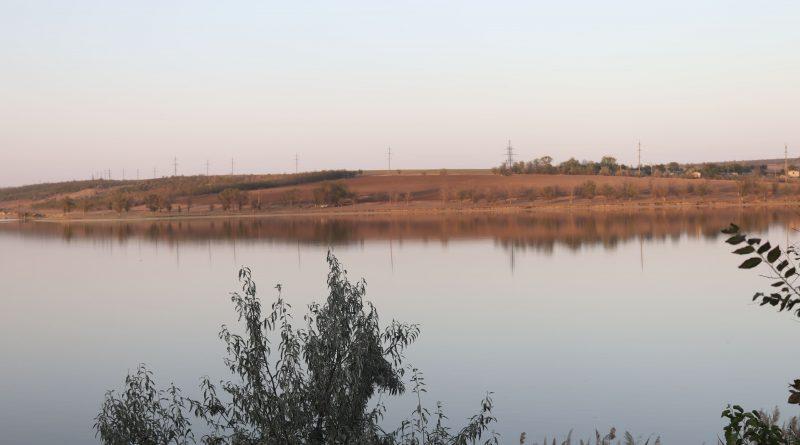 Мертвая рыба и мусор вокруг. Как озеро в Комрате превращается в болото
