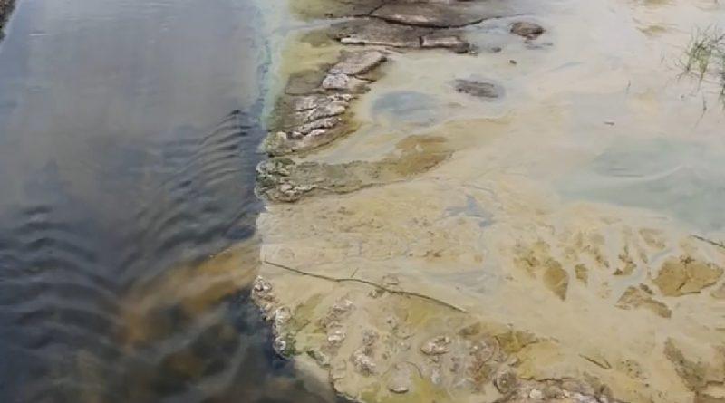 Мэр Комрата сообщил о загрязнении Ялпуга промышленными отходами. Кому они принадлежат никто не знает