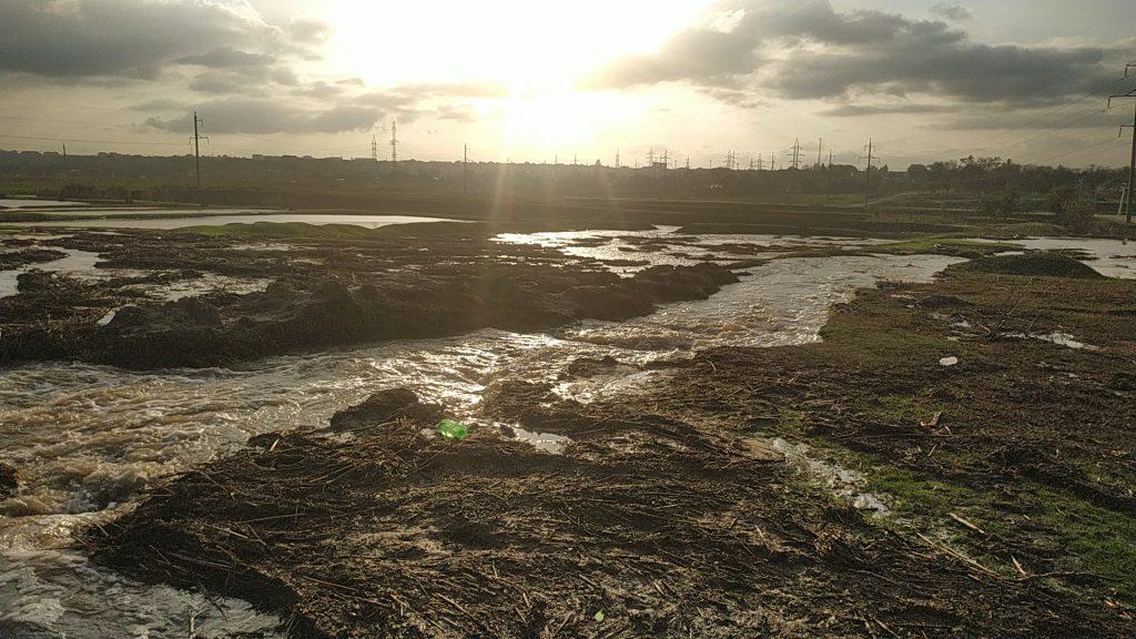 (Фоторепортаж) В каком состоянии озеро в Комрате, после значительного повышения уровня воды