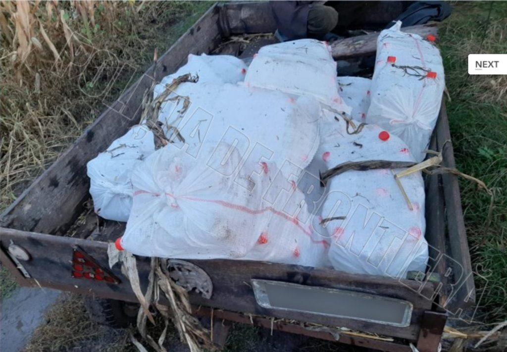 (Фото) Пограничная полиция задержала 45-летнего жителя за перевозку этилового спирта. Емкости были спрятаны под кукурузой в телеге