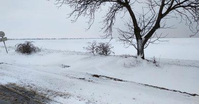 (Фото) Юг Молдовы накрыло снегом