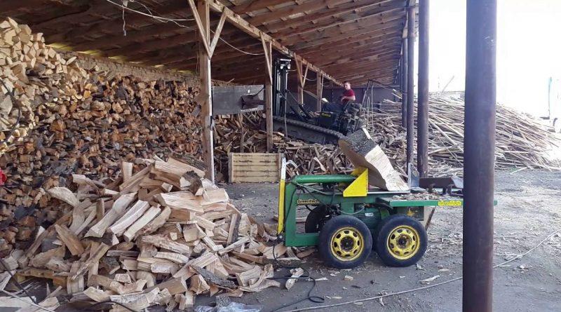 """Лесничие юга страны о стоимости дров: """"Цены поднять не можем, продажи и так упали"""""""