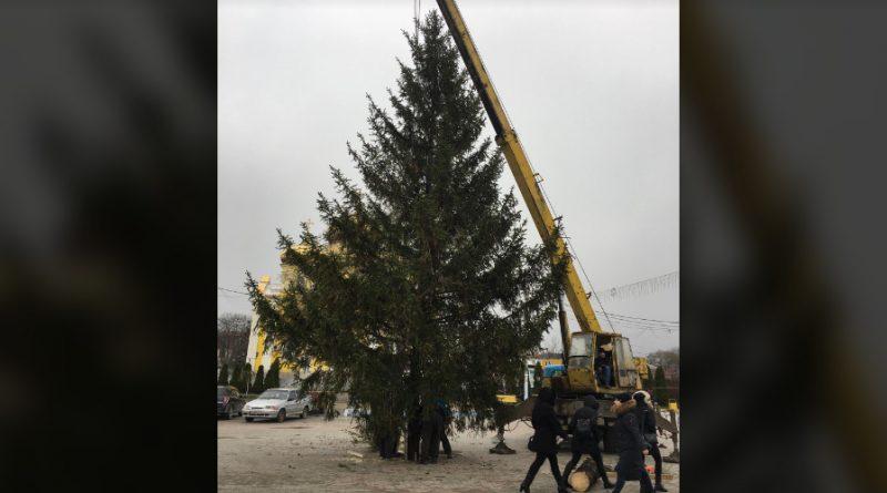 В Комрате на площади установили новогоднюю ель. Как город встретит Новый Год в условиях пандемии?