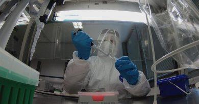 Россия передала Молдове 5 тыс. тестов на коронавирус