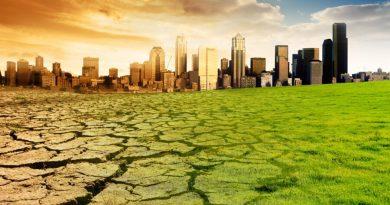 2020 год станет вторым самым жарким за всю историю метеонаблюдений