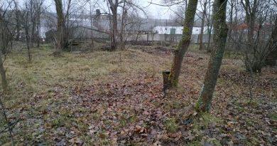 (Фото) На окраине Комрата в  лесополосе начнется строительство неизвестного объекта. Как так вышло?