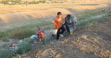 Вместо мусора — деревья. Как в селе Чишмикиой борются со стихийными свалками