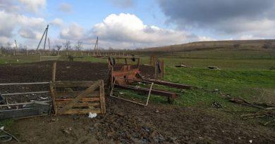 На окраине Комрата из загона пропало стадо коз. Полиция просит помощи в установлении местонахождения животных