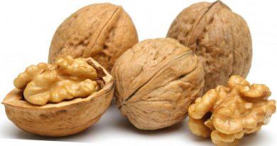 Отраслевой специалист: «Цены на орехи в скорлупе сильно зависят от качества плодов»