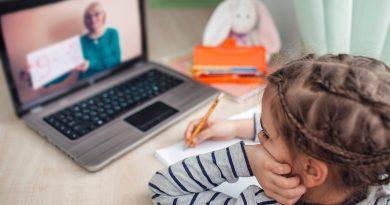 «Мы против онлайн уроков!» В Кишиневе родители выходят на протест