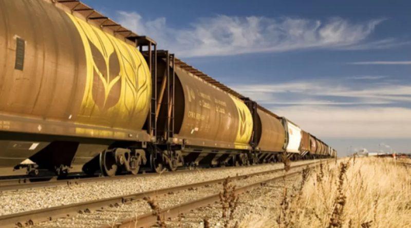 Майя Санду призвала правительство ввести временные ограничения на вывоз пшеницы из госрезерва