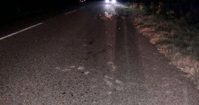 В Кантемирском районе водитель сбил насмерть пешехода и сбежал с места ДТП. Его нашли по горячим следам