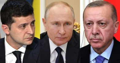 Эрдоган поддержал программу возвращения Крыма в состав Украины. В ответ Россия приостановила авиасообщение с Турцией