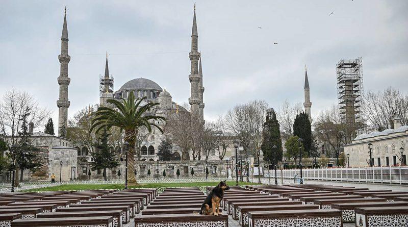 Турция с 29 апреля уходит в полный локдаун