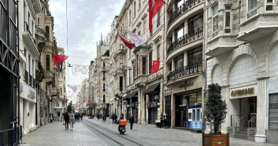 Турция вводит круглосуточный комендантский час на три дня