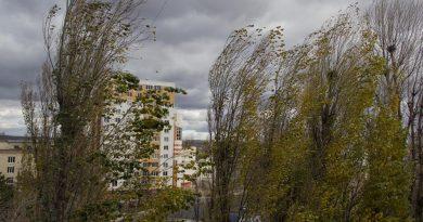 В Молдове объявлен «жёлтый» уровень погодной опасности из-за сильного ветра