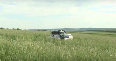 (Видео) В Яловенском районе самолет совершил вынужденную посадку на пшеничное поле