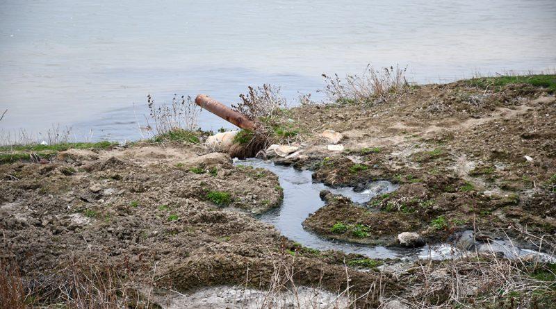 """(Аудио) """"Как малые реки юга Молдовы засоряют Дунайский бассейн"""". Подкаст с Людмилой Федотовой"""