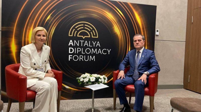 Ирина Влах: Мы можем помочь азербайджанским компаниям поставлять товары на рынок ЕС