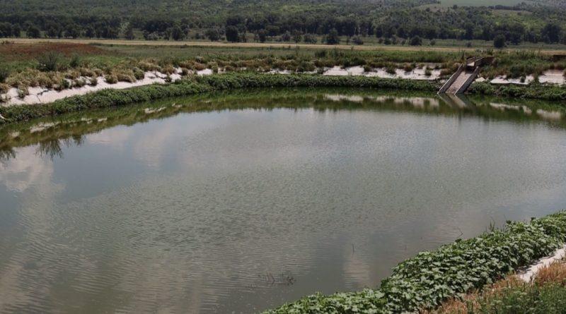(Репортаж) Как стоки из очистных сооружений Чадыр-Лунги засоряют местную реку