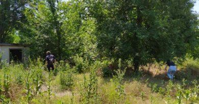 В Кантемире две недели разыскивали 22-летнего парня. Его нашли повешенным