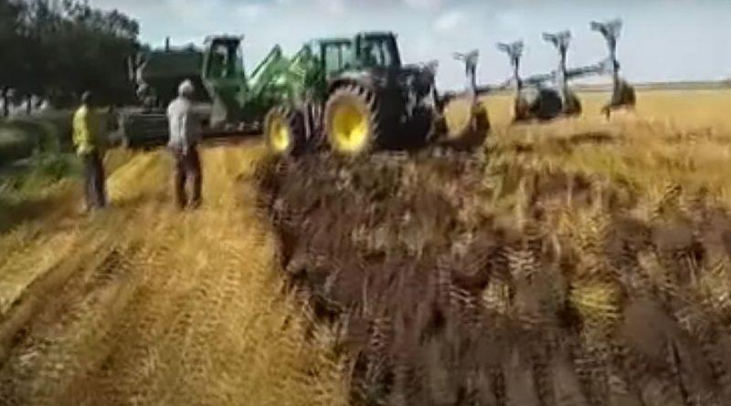"""""""Урожай принадлежит им, но земля то наша"""". В Копчаке во время уборки пшеницы произошел конфликт"""