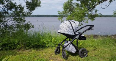 Трагедия в Яловенском районе: коляска  с восьмимесячным ребенком упала в озеро - малыш утонул