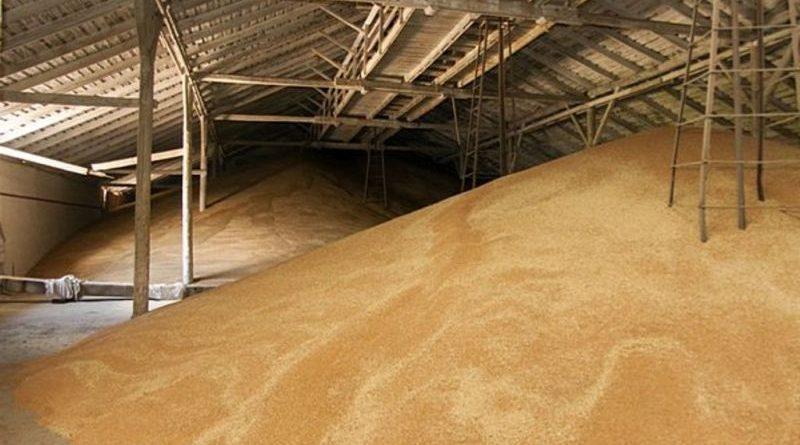 По делу о пропаже пшеницы из резервного фонда Гагаузии наказали предпринимателя из Баурчи
