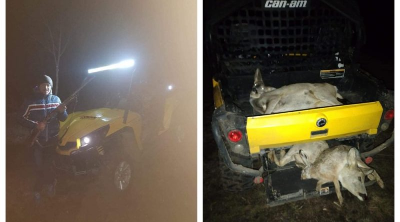 На севере Молдовы чиновников и полицейских обвинили в браконьерстве. Moldsilva проведет расследование